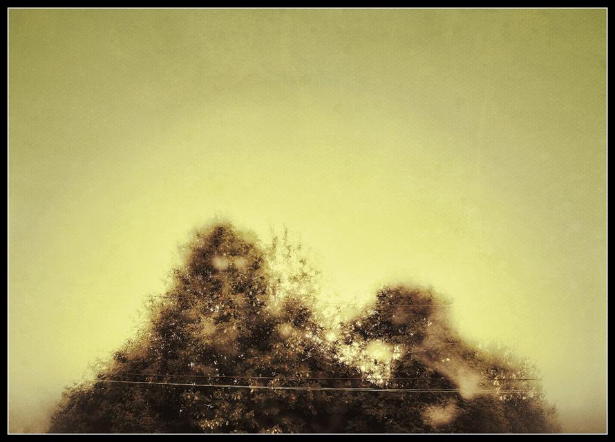 Barn-Underneath